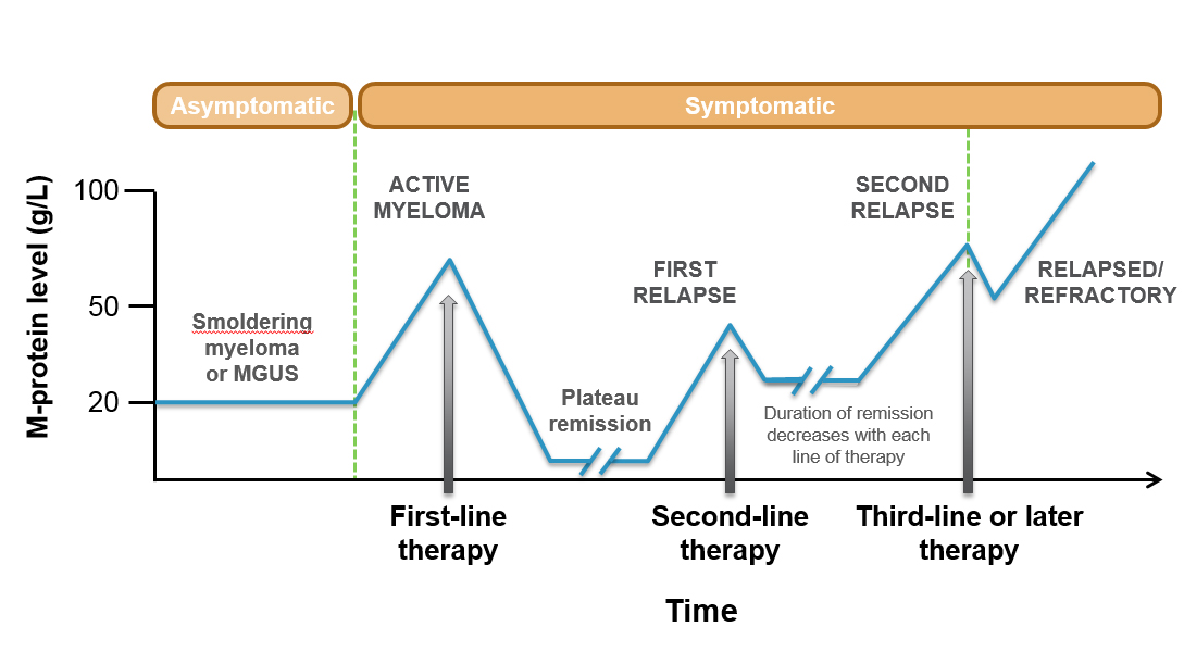 The stages of multiple myeloma